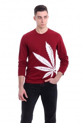 Реглан Cannabis - 3253 бордовый